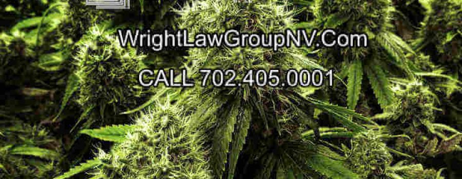 Buy Or Sell Medical Marijuana Business In Nevada